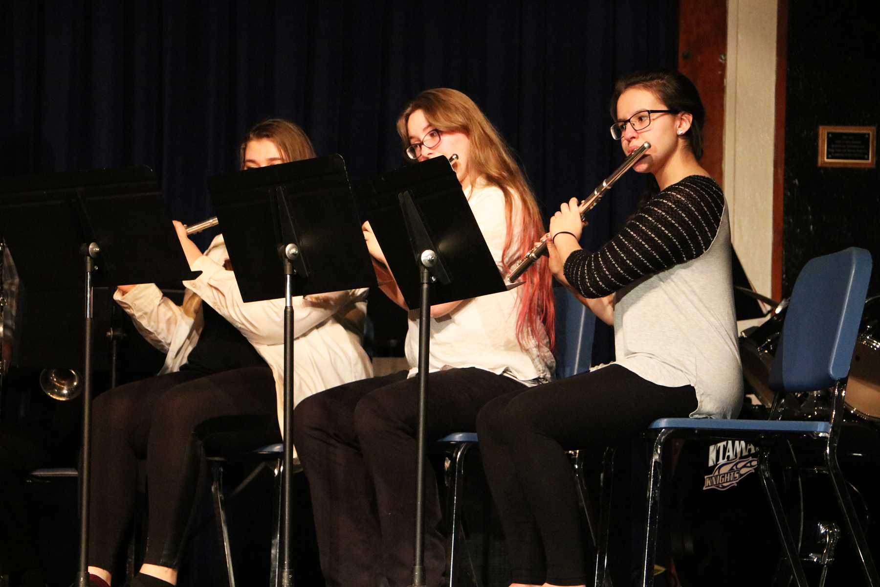 Music & Entertaiment